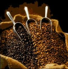 Taste the Best Coffee of Your Life in Brazil