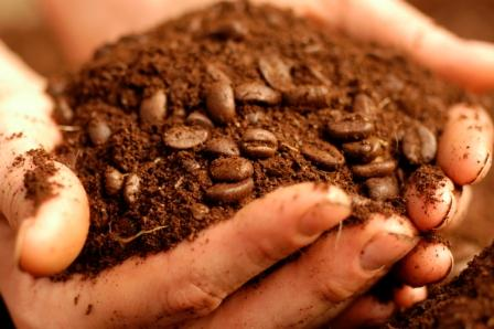 Reusing Your Coffee Grounds